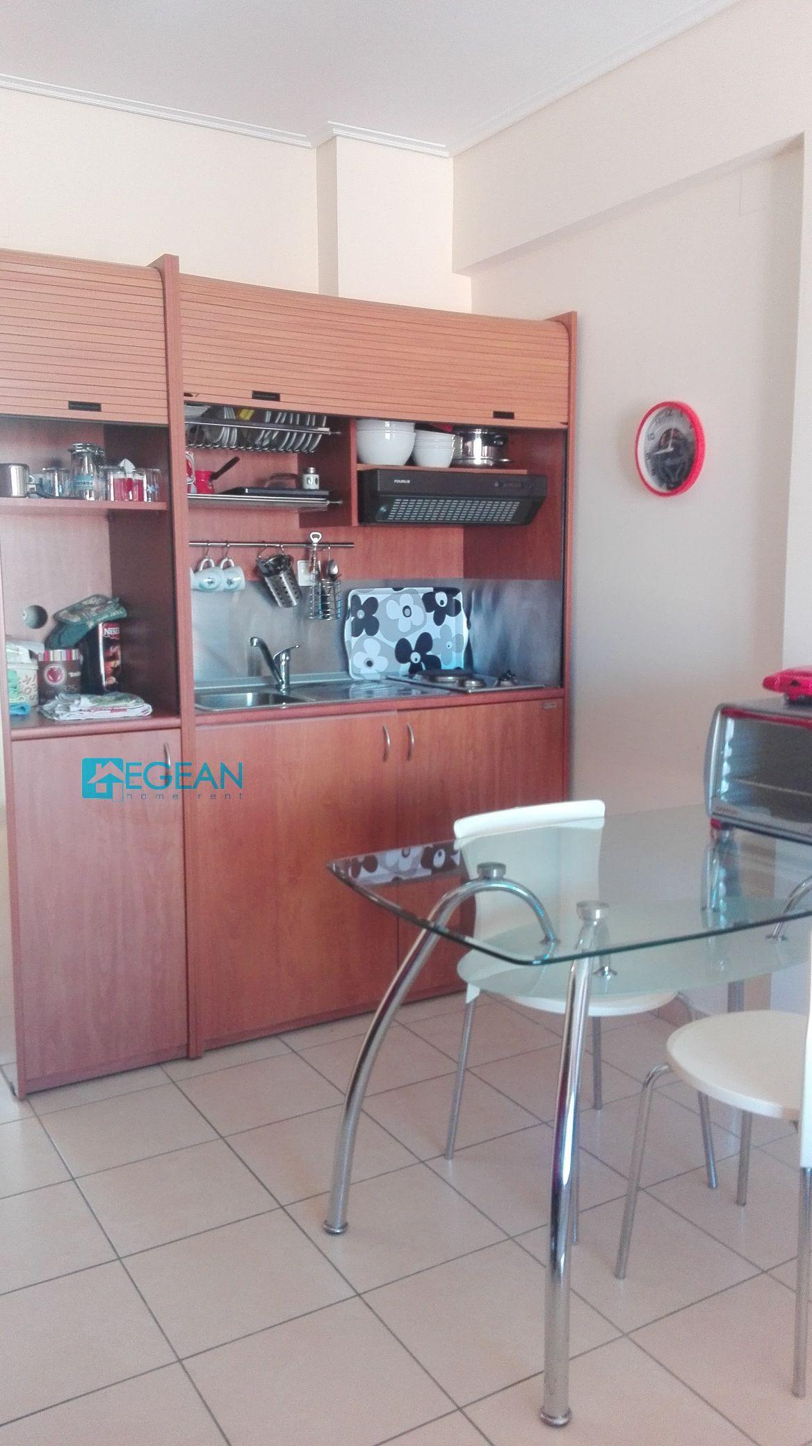 Lesvos Option 30 (35 sq.m-1bedroom)